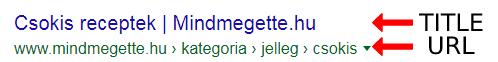 TItle - URL különbség